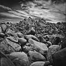 Alabama Hills #118 by Jeffrey  Sinnock