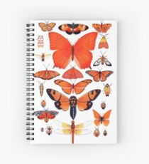Orange Insect Collection Spiral Notebook