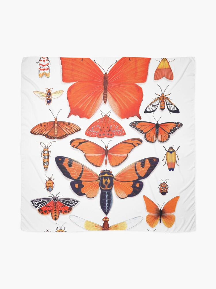 Alternate view of Orange Insect Collection Scarf