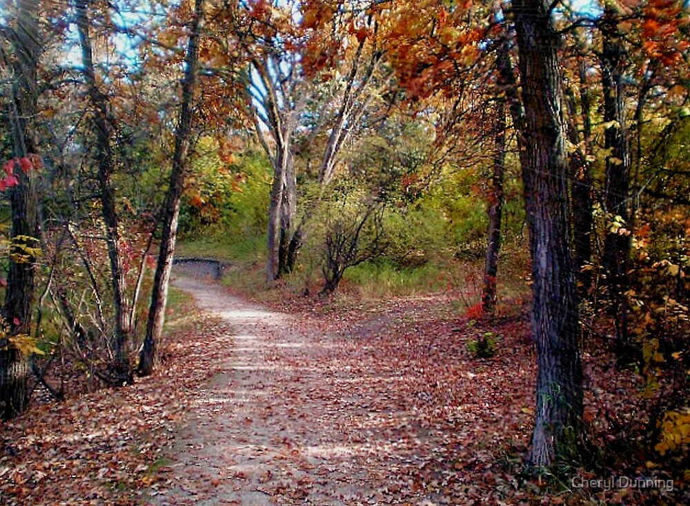 the path by Cheryl Dunning