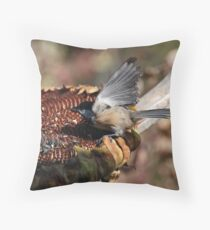 Ready ! Action ! Roll..........! Throw Pillow