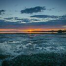 Sunrise - Wynnum, Australia by Kim Austin