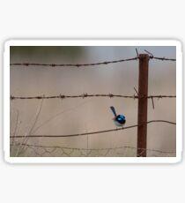 Bird on a Wire... Sticker
