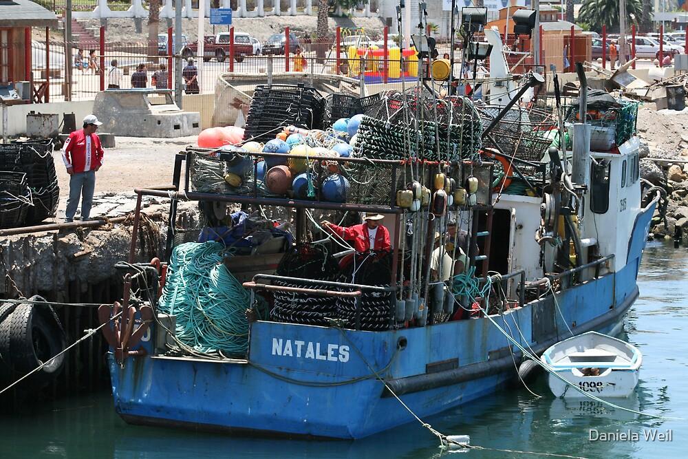 Fishermans Work by Daniela Weil