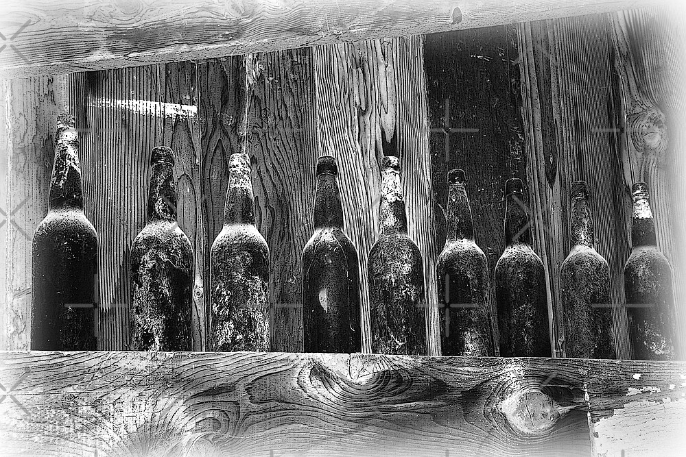 Bottles In The Shed by CarolM