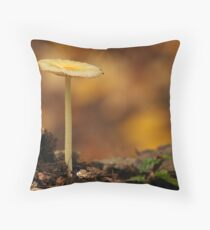 Autumn Colours ..... Throw Pillow