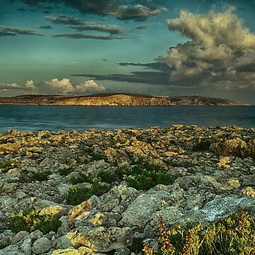 Early morning by the sea by sbosic