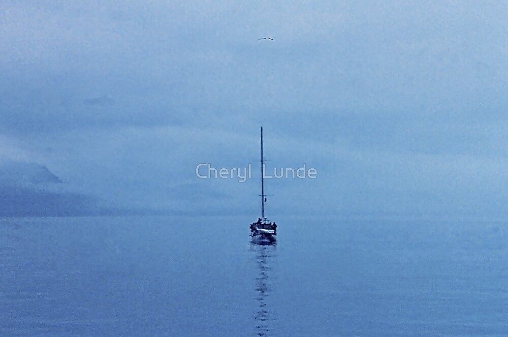 Reflections of a  Lone Sailor by Cheryl  Lunde