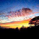 Pupukea sunset by Gosha Davis