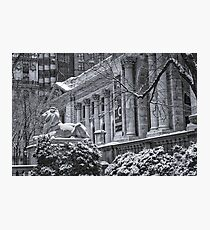 Library Lion, NYC Photographic Print