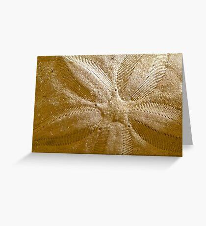 Star Pattern Greeting Card