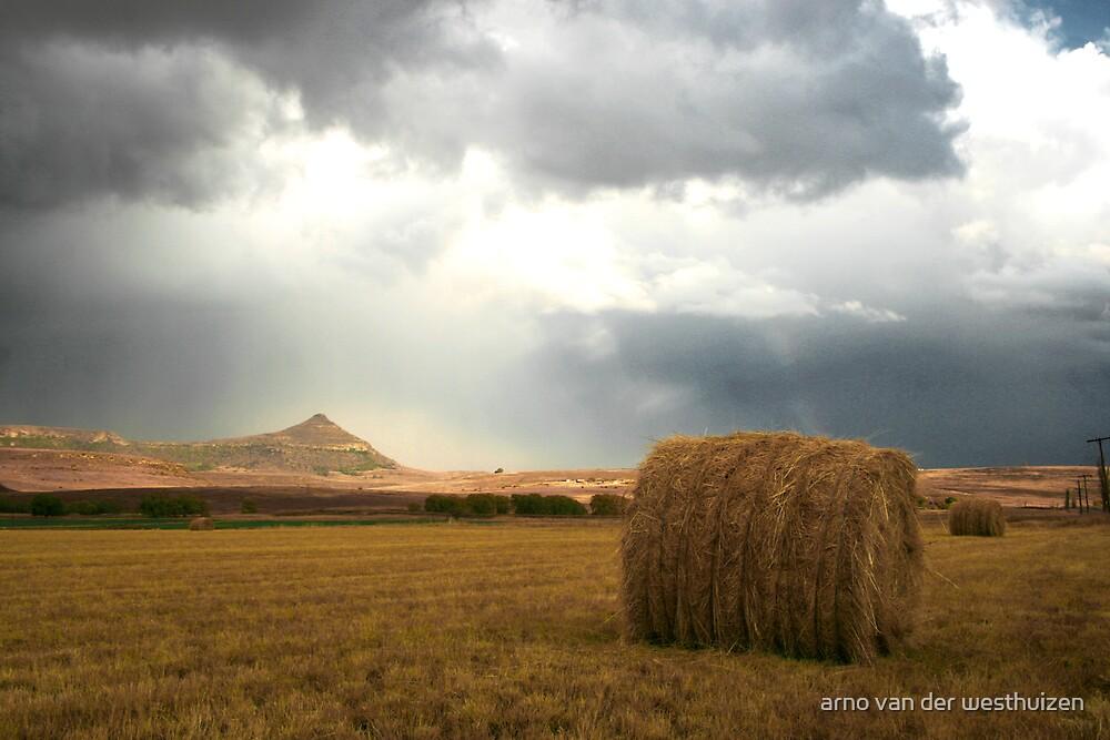 hay bale by arno van der westhuizen