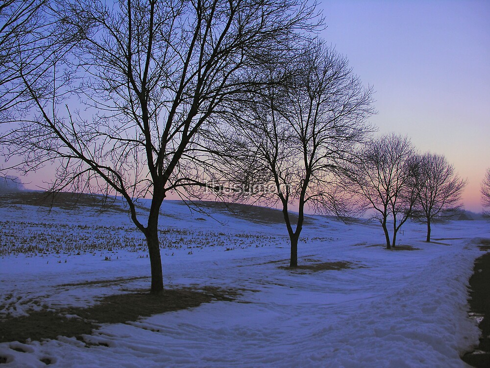 rows of trees by 1busymom