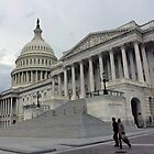 Walking Past The United States Capitol by Cora Wandel