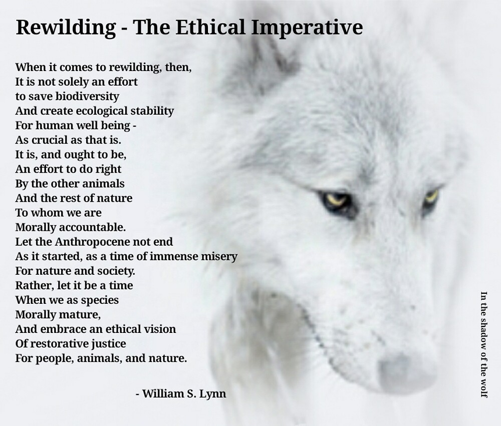 The Ethical Imperative  by WolfShadow27