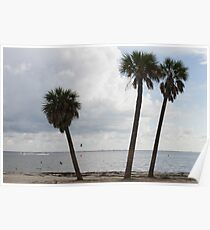 landscape ocean Poster