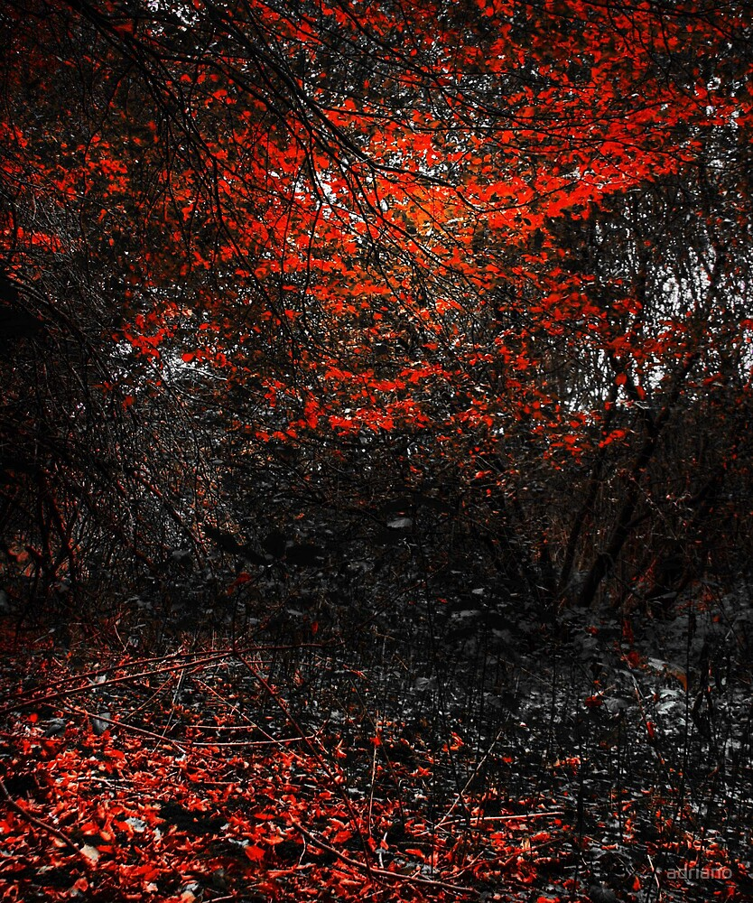 Wild Autumn leaves by adriano