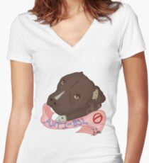 Anti-BSL Women's Fitted V-Neck T-Shirt