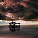 4530 by peter holme III