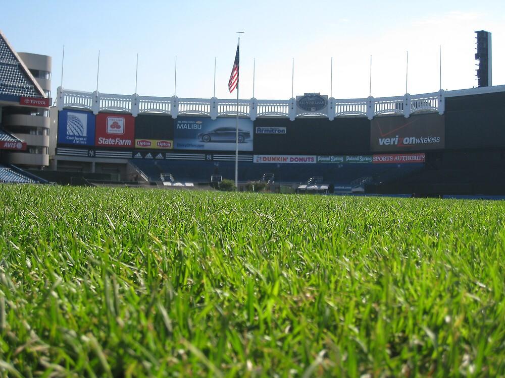 THE Stadium by Robert Brown