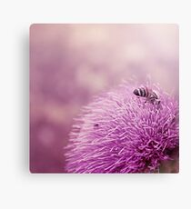 Beauty and the Bee Canvas Print