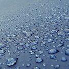 After the rain by Richard Davis