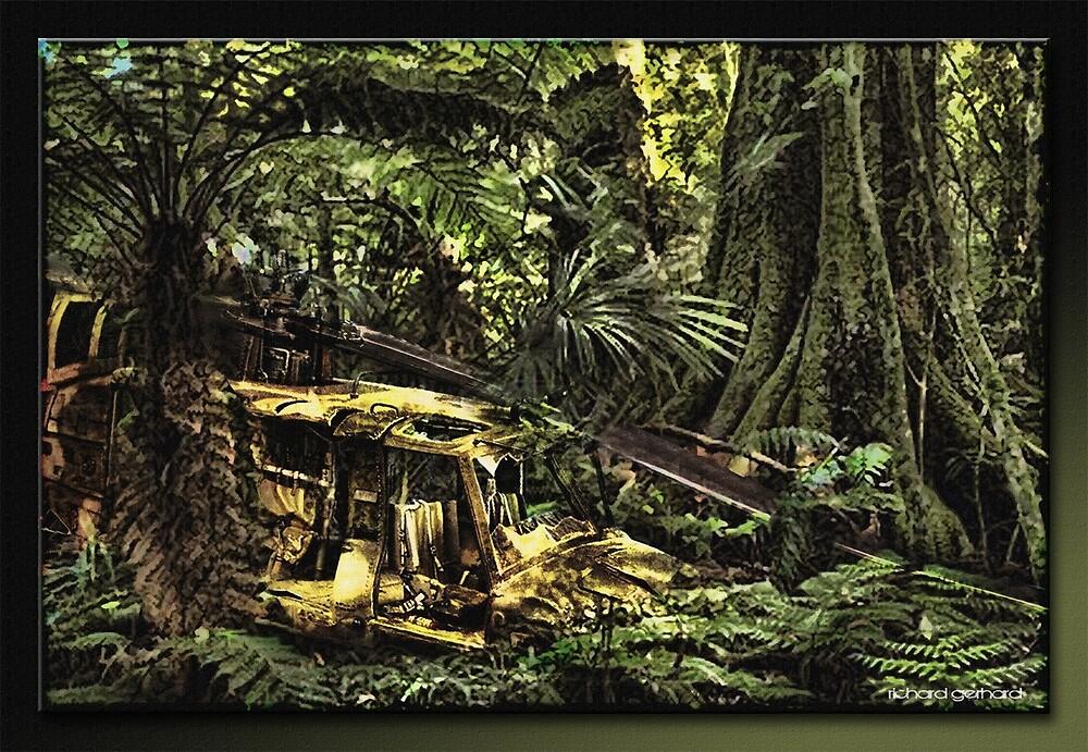 Hidden by Richard  Gerhard