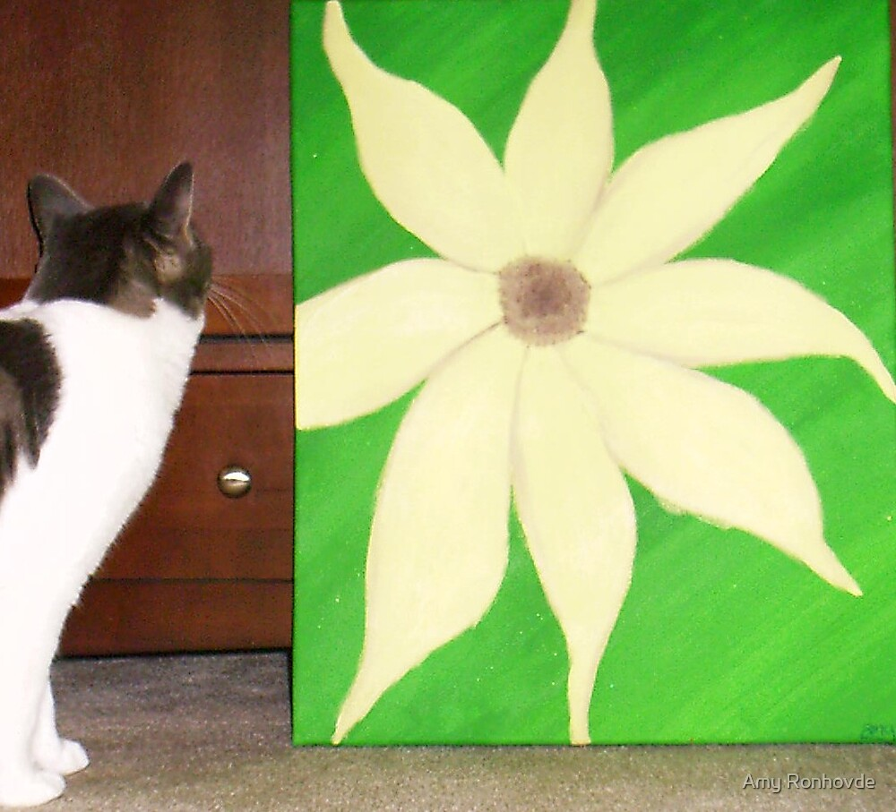 Lola and the Flower by Amy Ronhovde