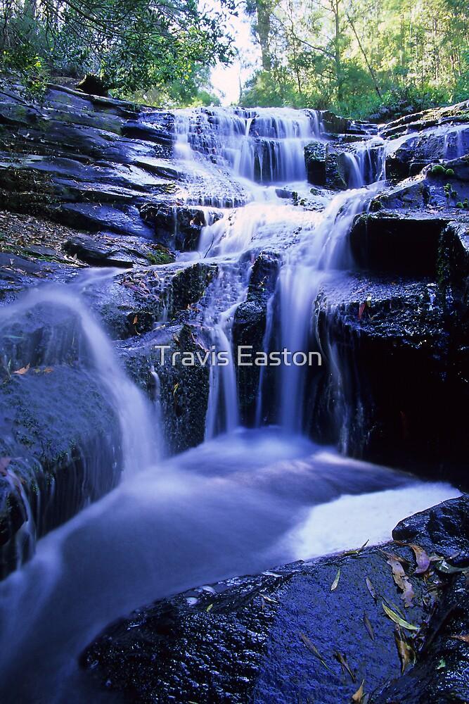 Upper Wanliss Falls by Travis Easton