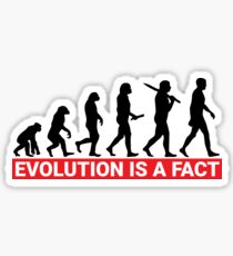 Evolution Is A Fact Sticker