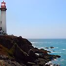 Pigeon Point Lighthouse by Nikki Collier
