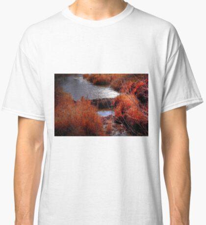 Autumn Grasses  Classic T-Shirt