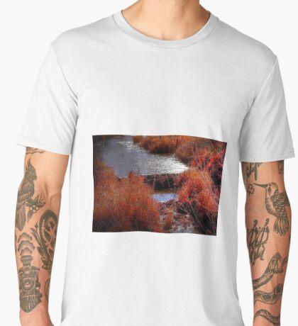 Autumn Grasses  Men's Premium T-Shirt