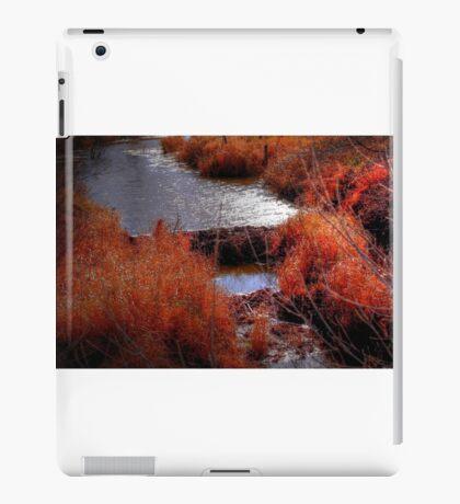 Autumn Grasses  iPad Case/Skin