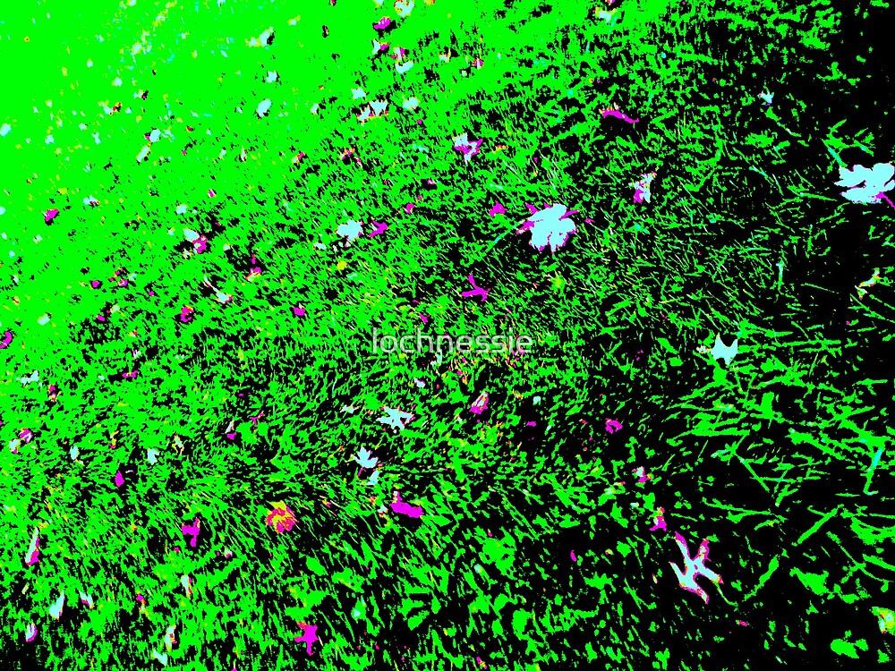 grass by lochnessie
