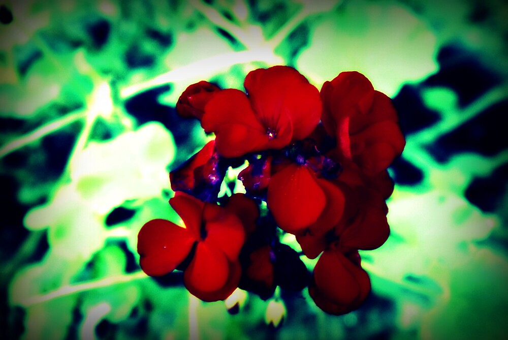 Crimson Flower by Shannon Byous Ruddy