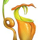 Nepenthes Bicalcarata  by PencilCat