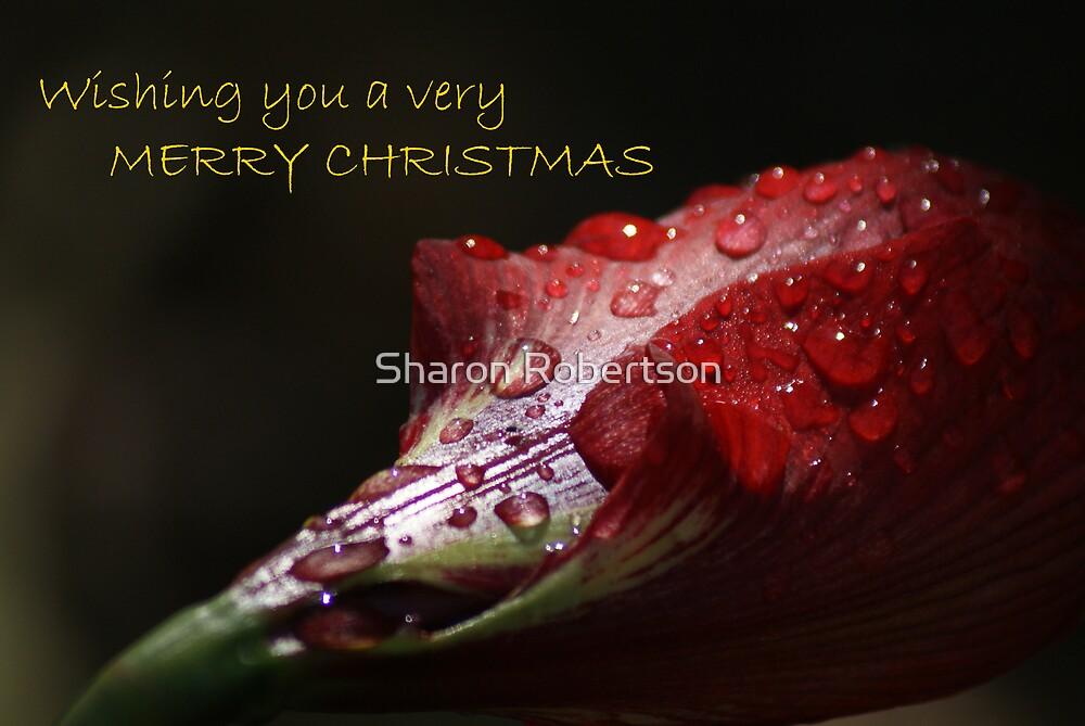 WISHING YOU A MERRY CHRISTMAS by Sharon Robertson