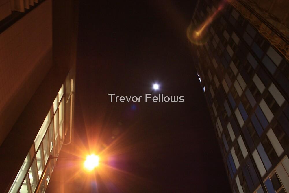 city nights  by Trevor Fellows