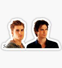 Damon and Stefan Salvatore Sticker