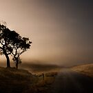 Misty Mountain Morning 1 by Candice O'Neill