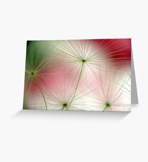 floating seeds Greeting Card