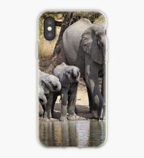 Elephant Mom and Babies iPhone Case
