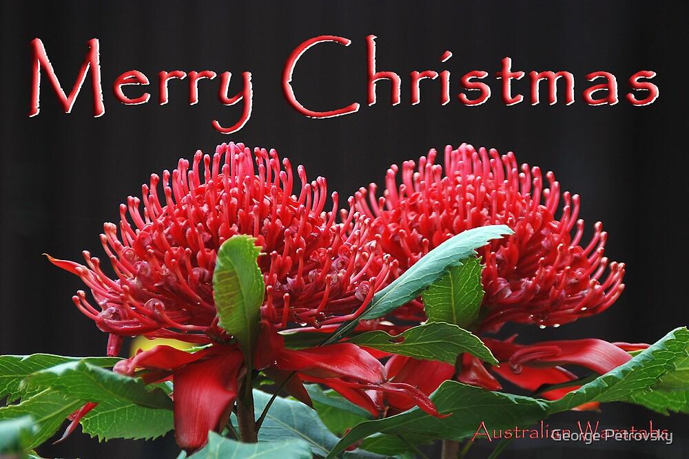 Merry Christmas No 1 by George Petrovsky