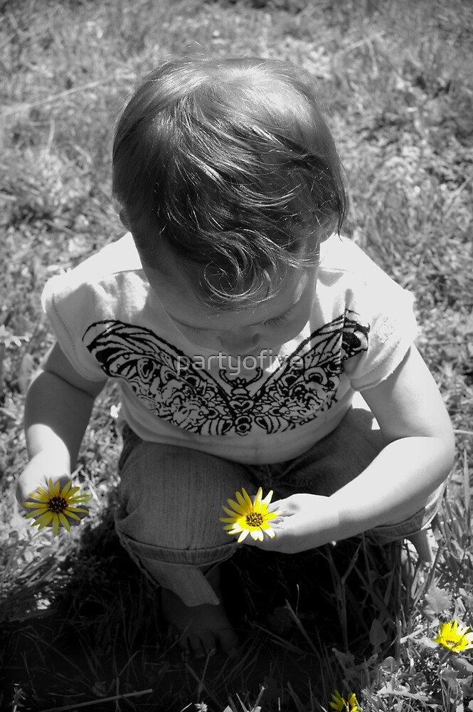 picking daisies... by partyofive