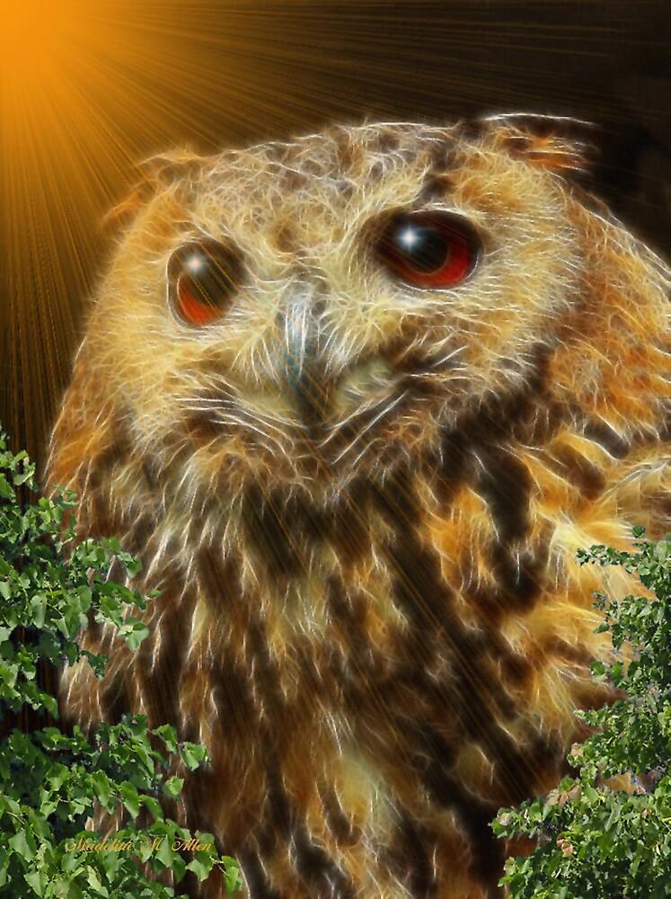 ~ HOOT HOOT OWL ~ by Madeline M  Allen
