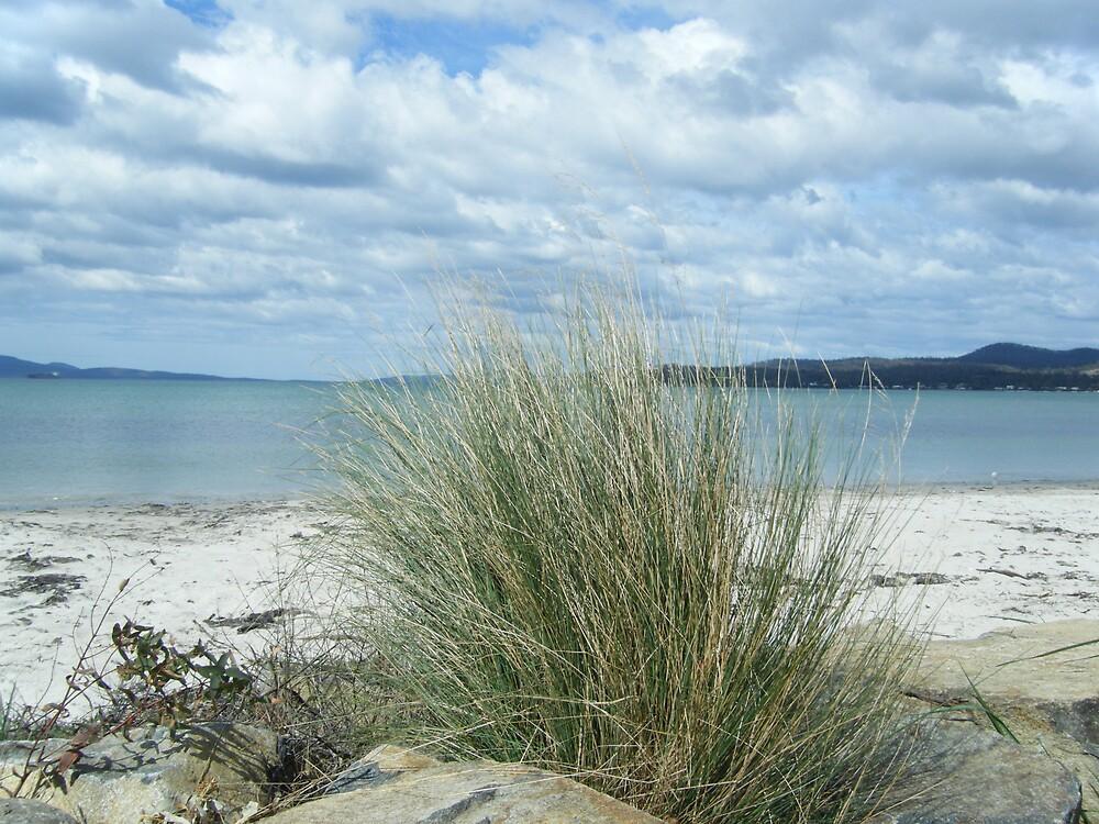 beach by samaraalise
