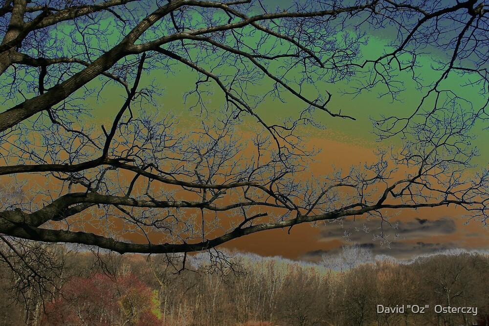 """Twilight Zone, Bronx, New York. by David """"Oz""""  Osterczy"""