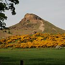 Roseberry Topping 5 by dougie1