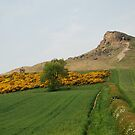 Roseberry Topping 6 by dougie1